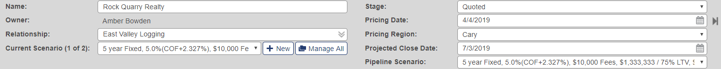 Header with fields for name, owner, relationship, current scenario, stage, pricing date, pricing region, project close date and pipeline scenario
